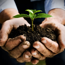 Oilfield Environmental Stewardship